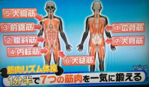 筋肉 リズム 体操 第 二